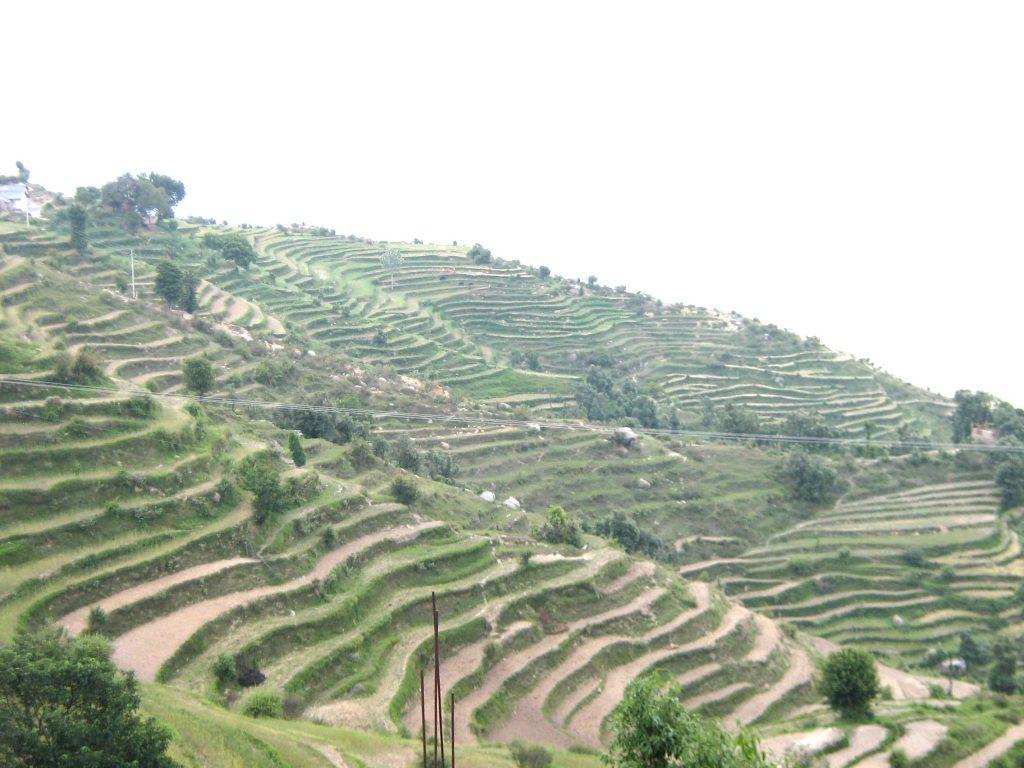 Ancient Farming2